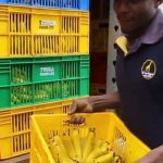 Twiga Foods Aims' at Improving Product Traceability by 2021