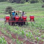 Equity Bank Invests Ksh 3Bn Targeting Smallholder Farmers