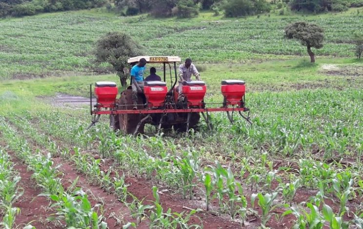 Equity Bank has set aside KSh3 billion loans for the next five years with the aim of reaching 100,000 food crop farmers through its Kilimo Biashara project.
