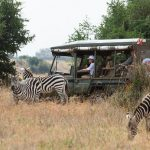 Kenya Wildlife Service Suspends Proposed Park Fees For Local Tourists