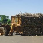Mumias Sugar to Resume Operations in March