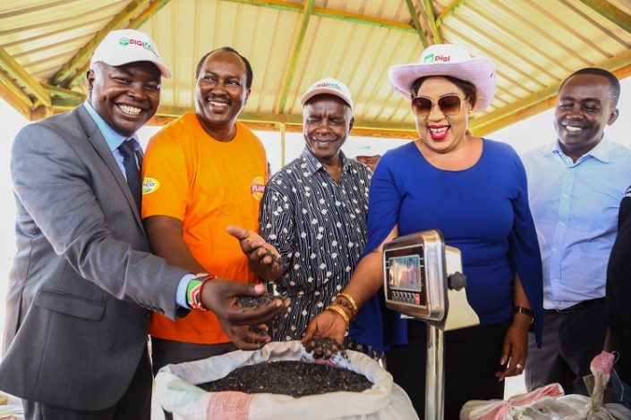 NCPB shall offer post-harvest management services to farmers registered on the platform, while DigiFarm will connect NCPB to small-scale farmers, who will in turn, access NCPB services at prevailing rates.