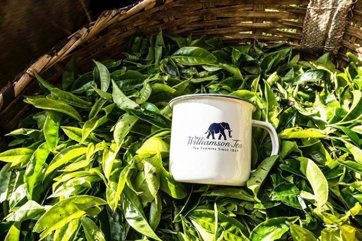 Williamson Tea Kenya (Plc) on Friday warned of lower profits for fiscal year ending 31st March 2021.