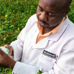 Dudutech Unveils NEMguard Pest Control to Boost Horticulture Production