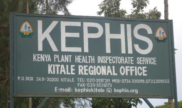 KEPHIS Land in Kitale Slipping Away to Grabbers