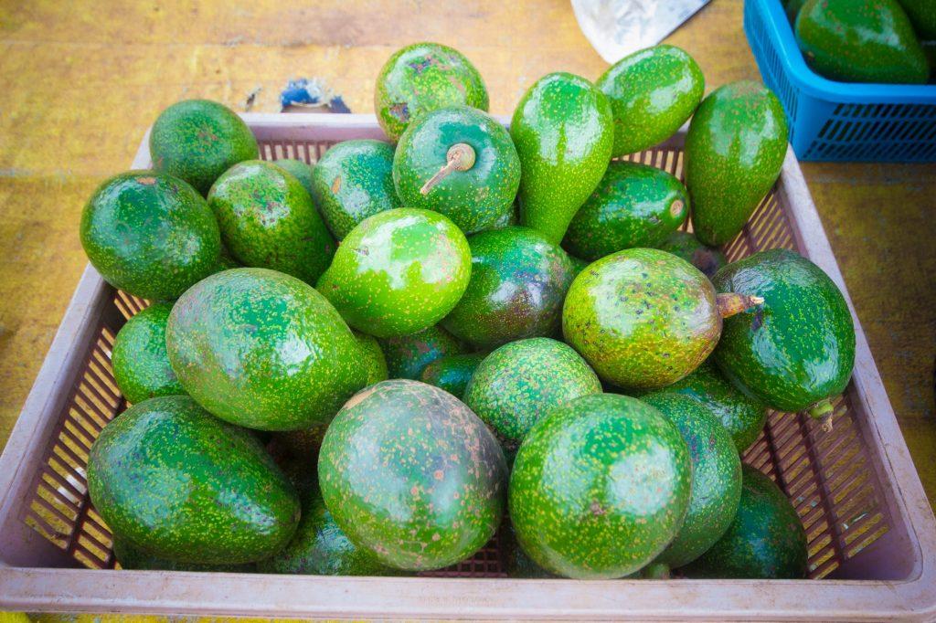 Kenyan Avocados Cleared to Enter Chinese Market