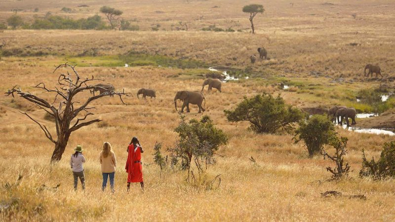 Kenya Tourism and hospitality sector