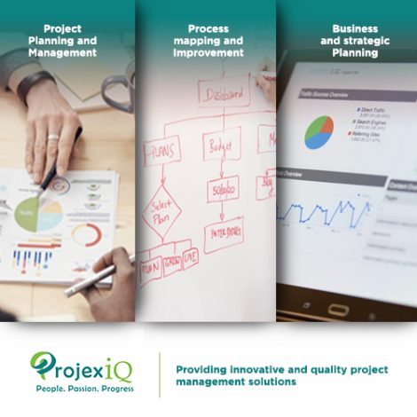 ProjexIQ Project Management processes