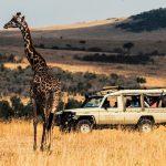 Kenya Earns Ksh163.56 billion from Tourism in 2019