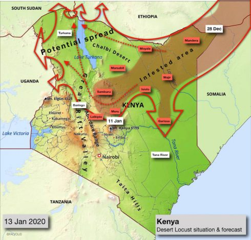 Kenya Scales Up to Contain Spread Desert Locust with Ksh 230 million