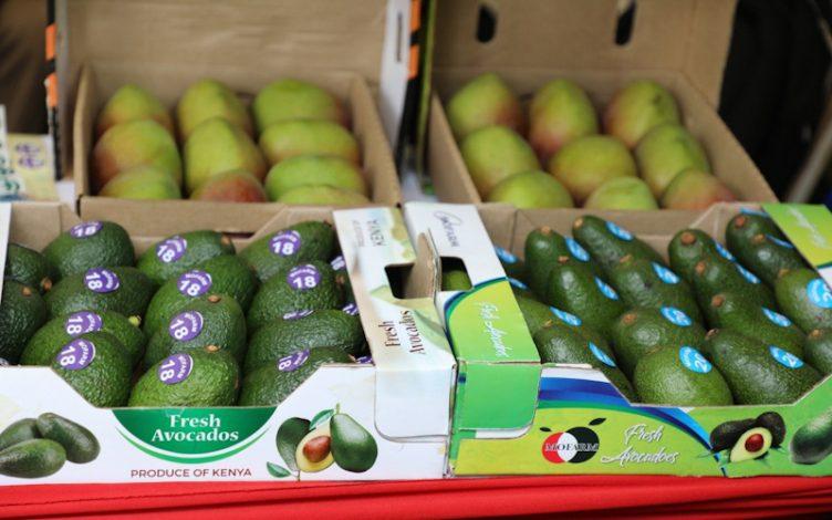 Kenya Seeks to Bolster Trade Ties With European Union Market