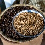 Kenya's Treasury Gazettes Commodities Markets and Coffee Exchange Regulations