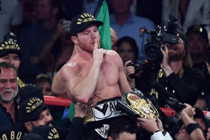 Mexican Boxer