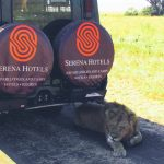 TPS Eastern Africa (Serena) Posts Half-year Loss of KSh 640.9 Million