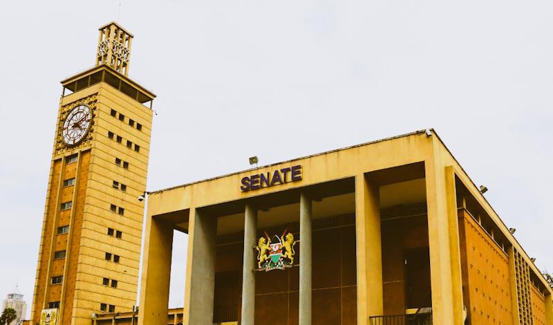 Probing Social Media Platforms? Kenya Senate Should Focus on 'Data': Lawyer