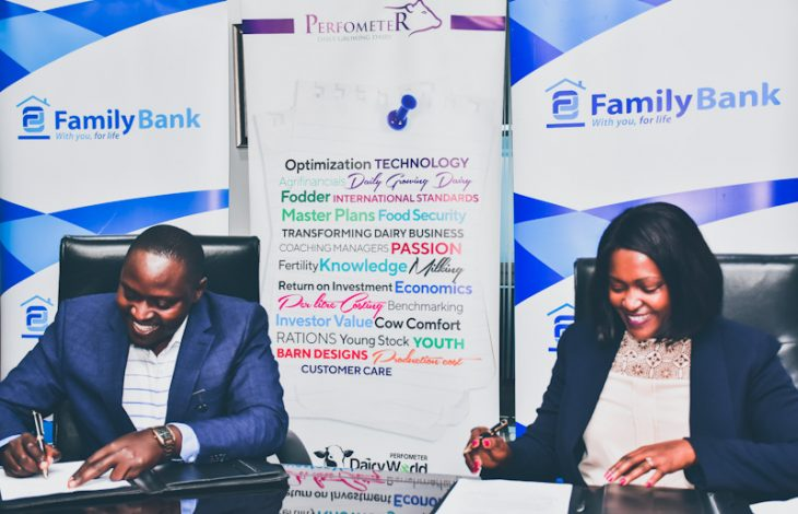 Family Bank to Provide KSh1bn Loan Credit to 100,000 Dairy Farmers