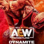 All Elite Wrestling Program to Debut on TNT Africa in February