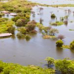 What $34Mn Project Can do to Tackle Effects of Climate Change in Kenya