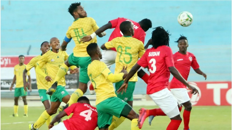 Sudan booked their spot in this year's African Cup of Nations tournament after beating South Africa 2-0.