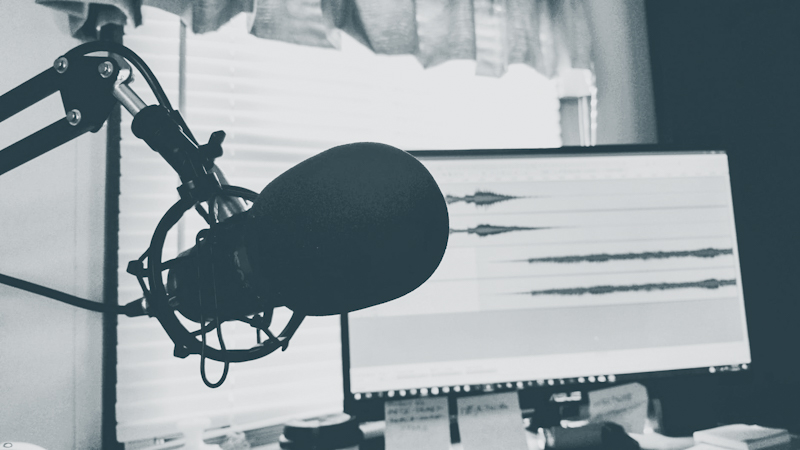 People with successful podcasts and a decent number of listeners can repurpose their episodes into revenue-generating eBooks.